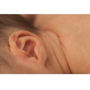 赤ちゃんの目と鼻と耳
