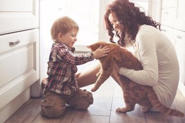 ペットと子供の関係